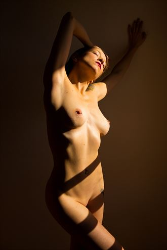 at the venetian blinds artistic nude photo by photographer excelsior