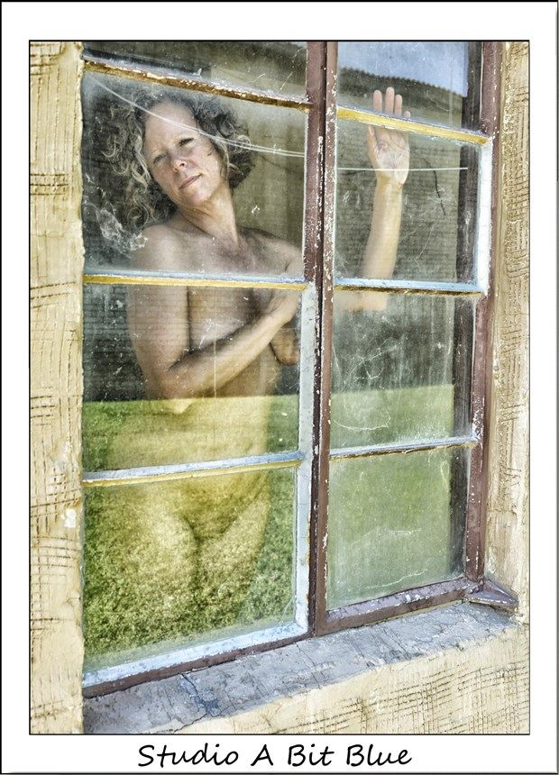 at the window Artistic Nude Photo by Model free2bejustme