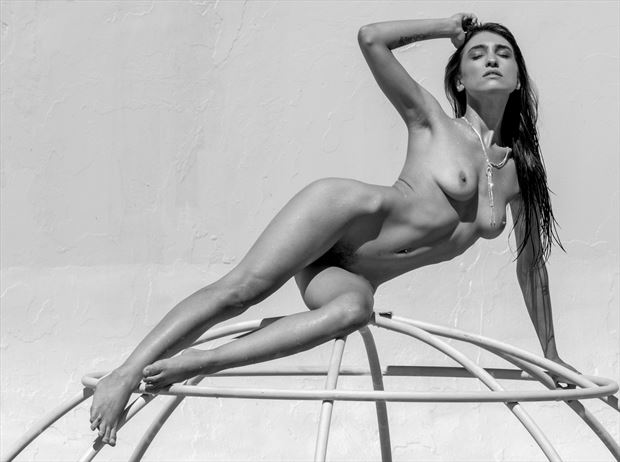 at weese s artistic nude photo by photographer evan