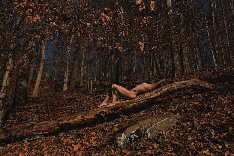 autumn artistic nude photo by photographer ajharter