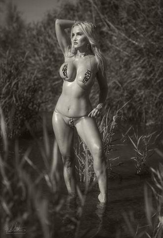 ava bikini photo by photographer art of lv