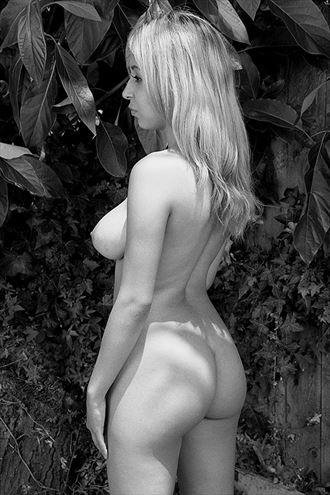 avocado tree iii artistic nude photo by photographer marcophotola
