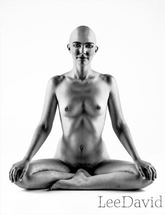 b b artistic nude photo by photographer lee david