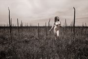 badlands national park sd artistic nude photo by photographer ray valentine