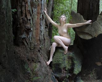 bambii in the forest artistic nude photo by photographer fotografie randall