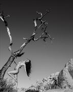barker dam 1 artistic nude photo by photographer maia