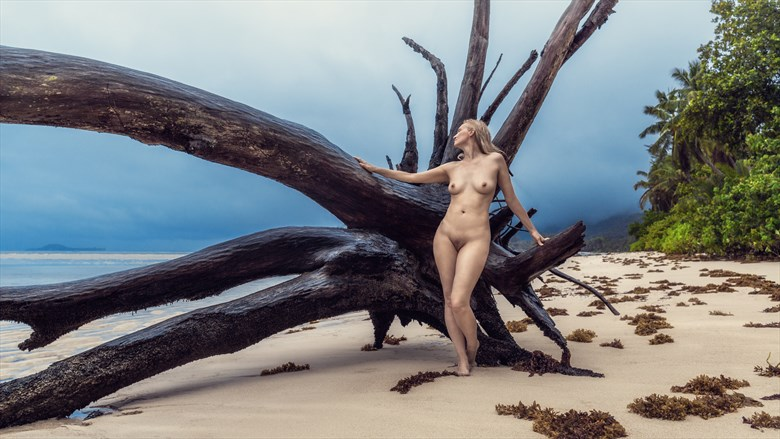 beach on the island Artistic Nude Photo by Photographer dml