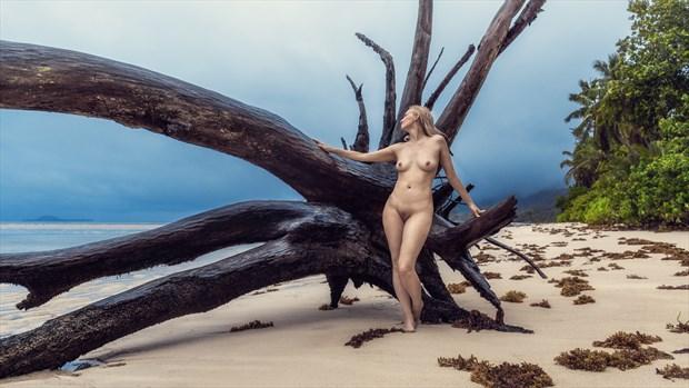 beach on the island Artistic Nude Photo by Photographer dml