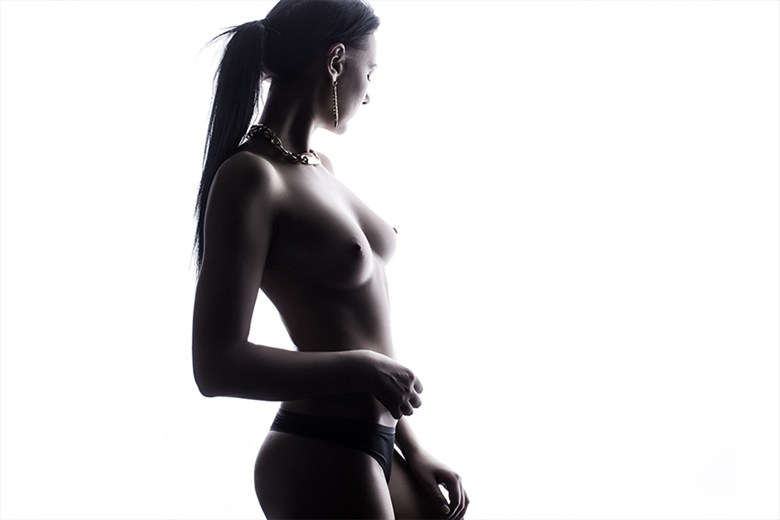 beauty Artistic Nude Photo by Photographer 1102