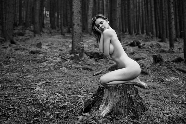 beauty in the forest artistic nude artwork by artist kuti zolt%C3%A1n hermann