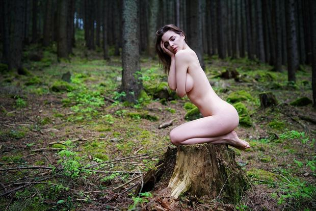 beauty in the forest color artistic nude artwork by artist kuti zolt%C3%A1n hermann