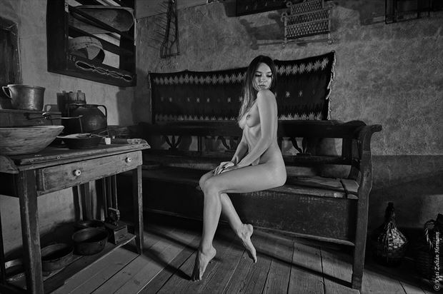 beauty in the old house artistic nude artwork by artist kuti zolt%C3%A1n hermann