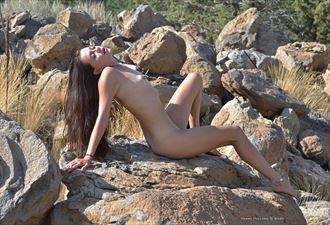 beauty on the rocks artistic nude photo by photographer shootist