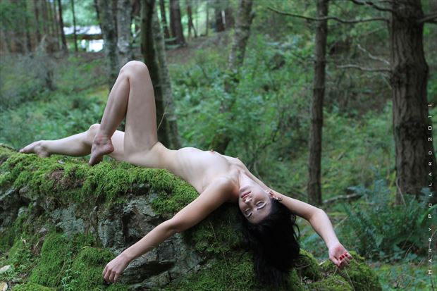 bed of moss artistic nude photo by photographer shootist