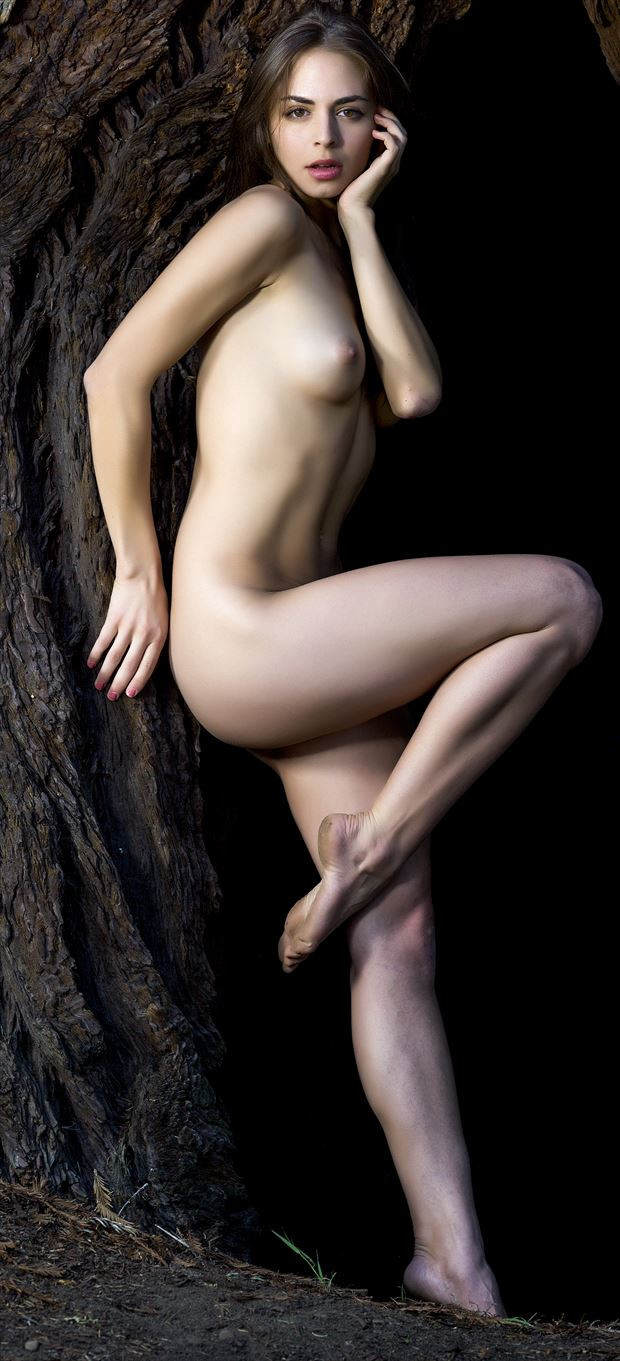 bekka in the tree artistic nude photo by photographer evan