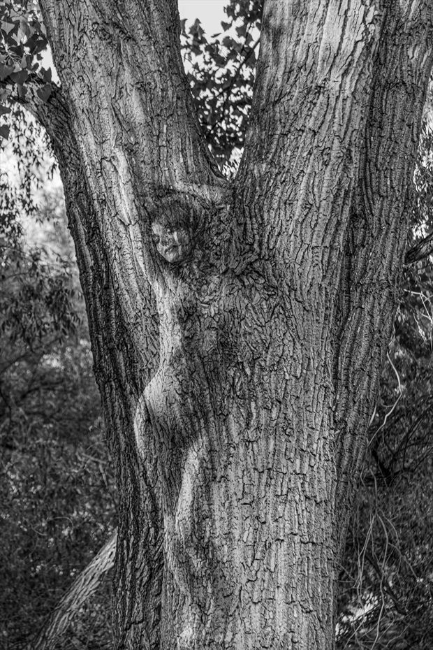 birth of a dryad artistic nude photo by photographer excelsior