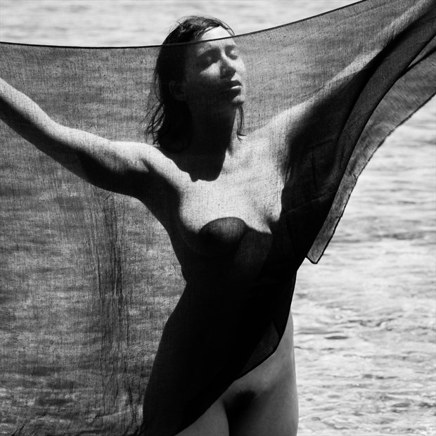 black veil Artistic Nude Photo by Photographer Garden of the Muses