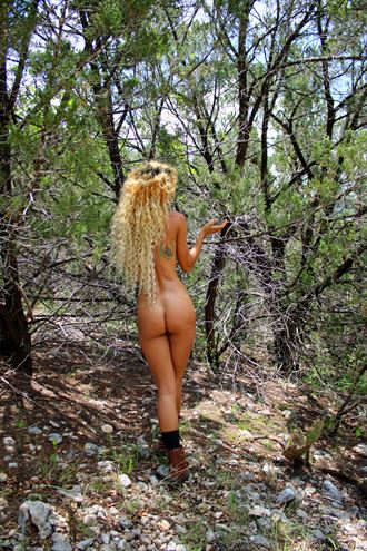 blonde beauty artistic nude photo by photographer comet photos