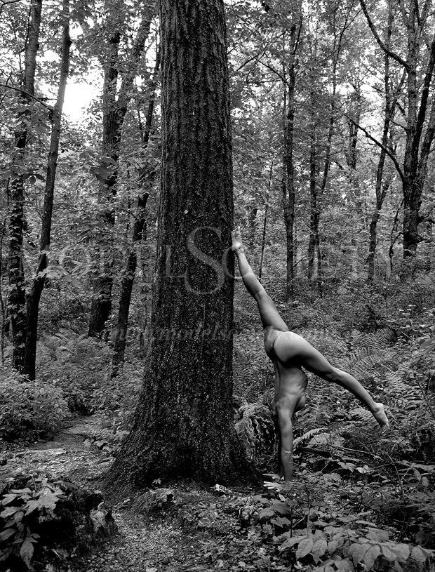 blue mound state park wi artistic nude photo by photographer ray valentine