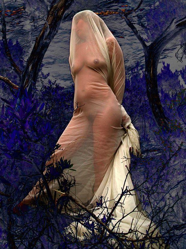 blue nature and tree lingerie photo by photographer joseph auquier