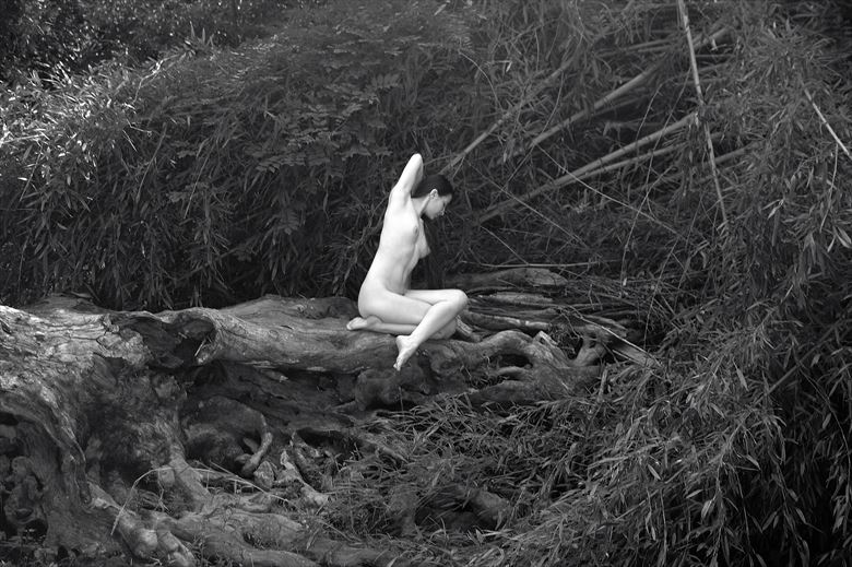 blue river dream contrast i artistic nude photo by photographer afplcc