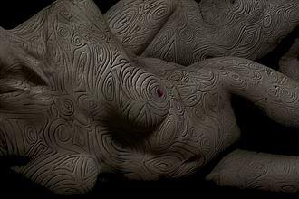 bodymap rose gold artistic nude photo by photographer art studios huck