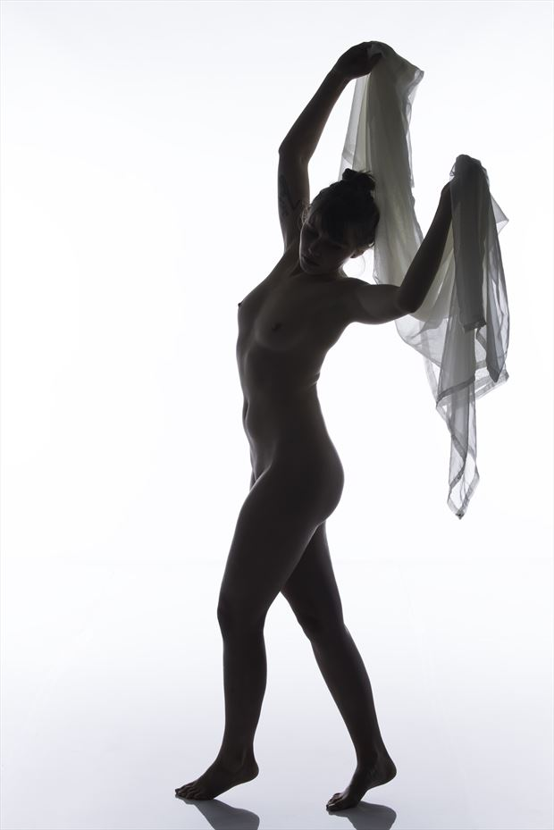 bodyscape artistic nude photo by photographer arcis
