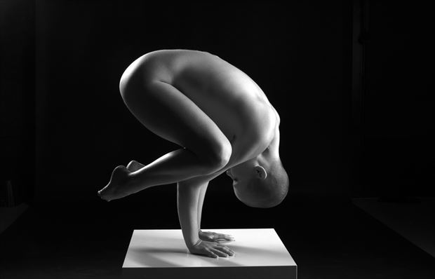 bodyscape artistic nude photo by photographer linda hollinger