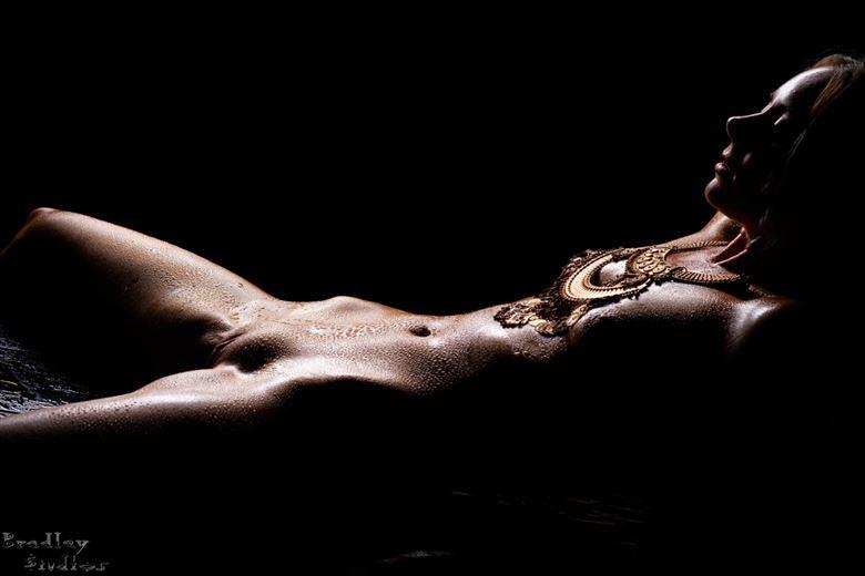bodyscape no 5 artistic nude photo by model alexandra queen