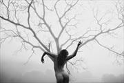 branches reaching self portrait artistic nude photo by model riley jade