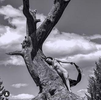 breezy artistic nude photo by model tigg