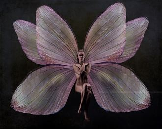 bri the pink fairy artistic nude artwork by photographer doc list