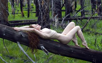 burnt forest artistic nude photo by photographer eric lowenberg