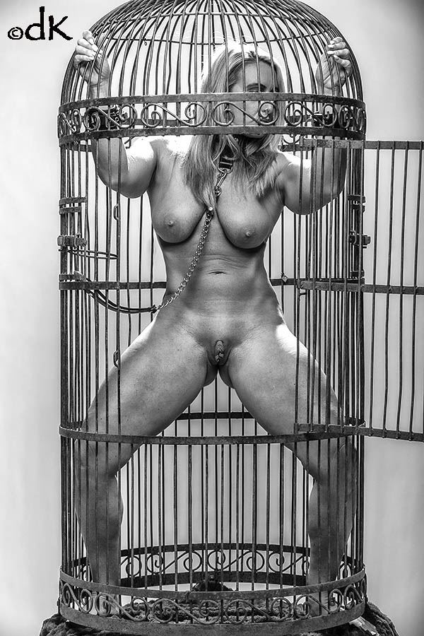 caged artistic nude photo by photographer dennis keim