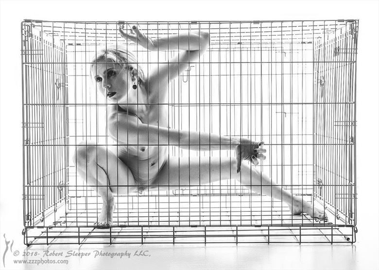 cagewalker artistic nude photo by model erin divine