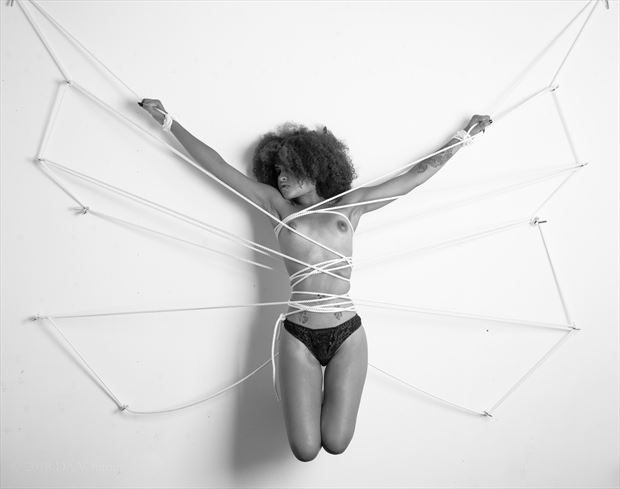 camushii ii artistic nude photo by photographer daswhitney