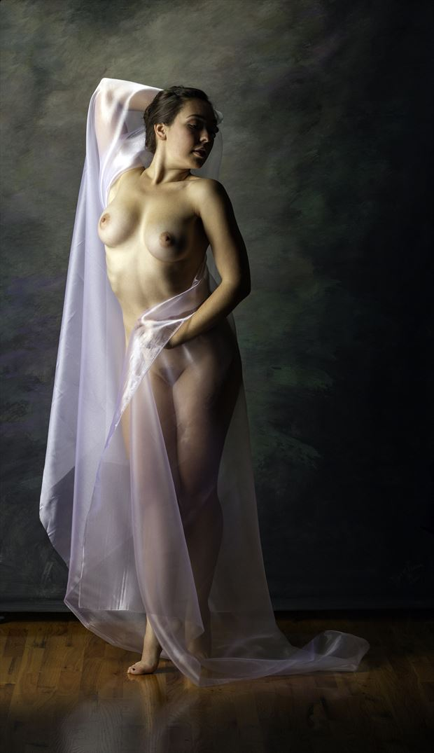 chiffon draped artistic nude photo by photographer redwood curtain