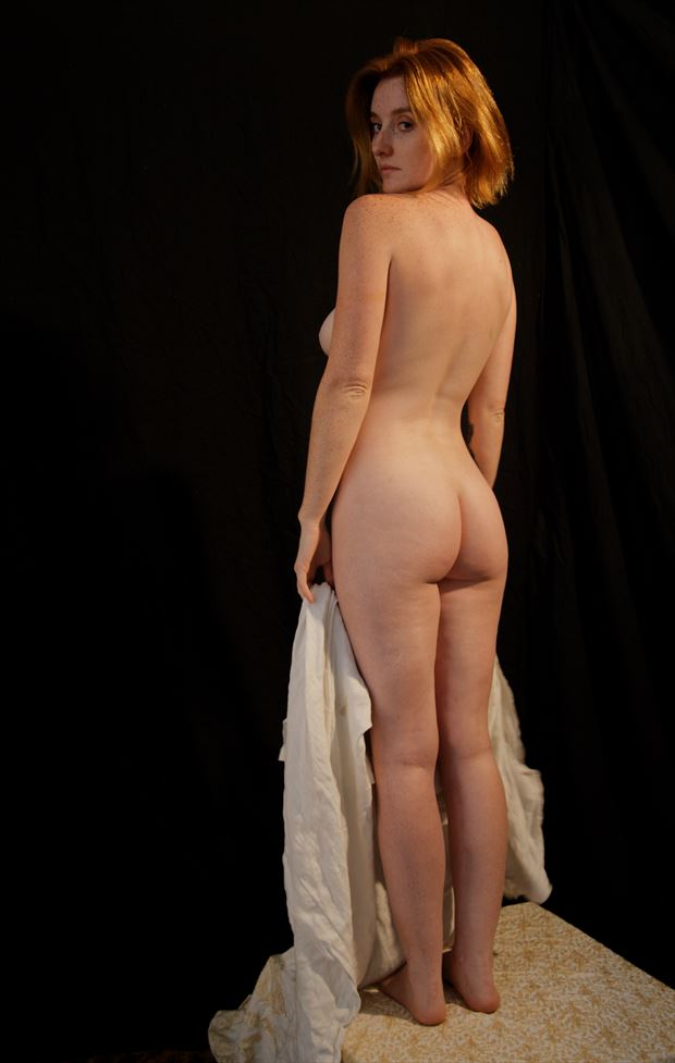 classic alyssa the view from behind artistic nude photo by photographer fred scholpp photo