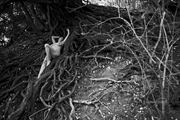 cliveden branches artistic nude photo by photographer gibson