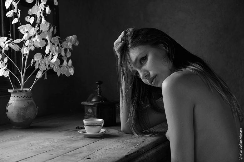 coffee time artistic nude artwork by photographer zoltan k