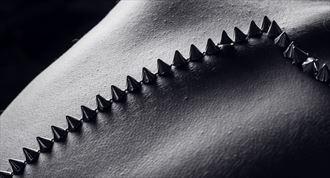 cones 2 artistic nude photo by photographer artytea