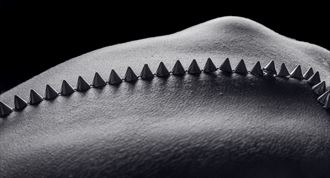 cones 3 artistic nude photo by photographer artytea