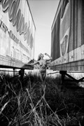 creatus (2014) Artistic Nude Photo by Photographer PhotoSmith