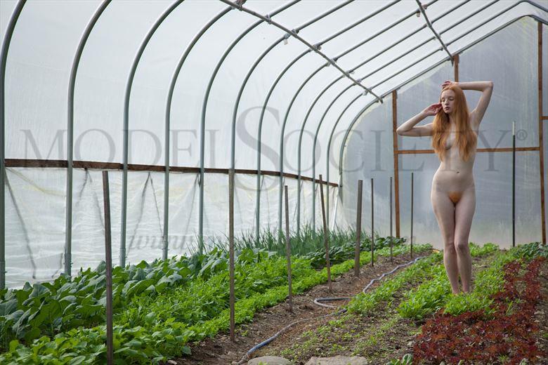 crimson madonna artistic nude photo by photographer michael grace martin