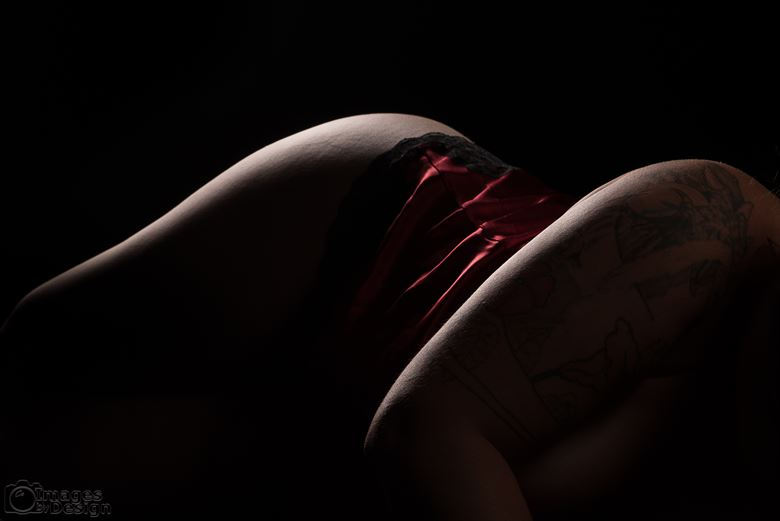 curves lingerie artwork by photographer intimate images