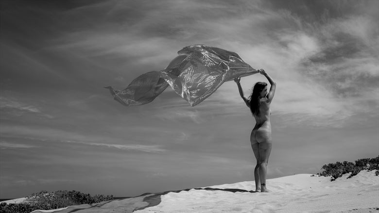 dancing with the wind artistic nude photo by photographer opp_photog