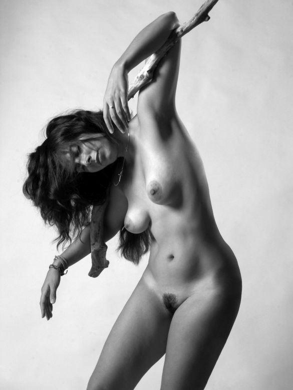 danse avec le bois mort artistic nude photo by photographer dick