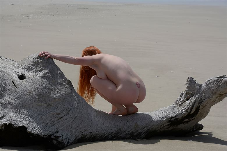 day at the beach 12 artistic nude photo by photographer rare earth gallery