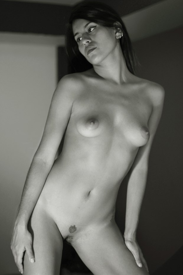 decidetly Artistic Nude Photo by Photographer lighting photography