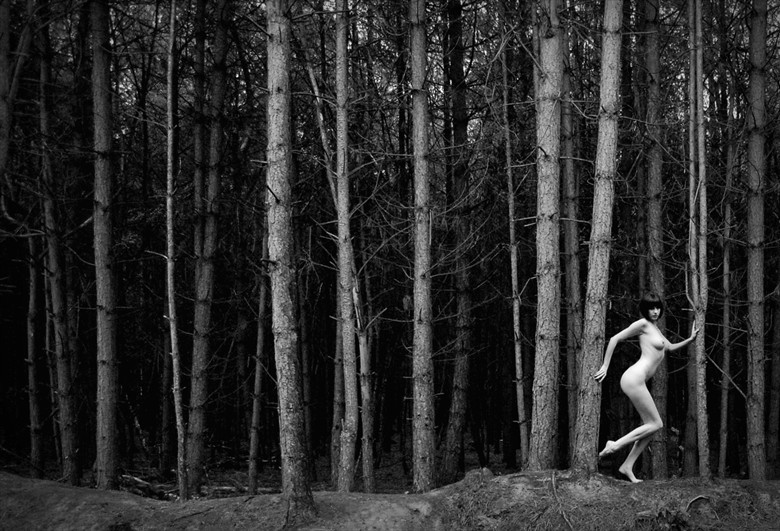 delamere forest Artistic Nude Photo by Photographer nigel kent